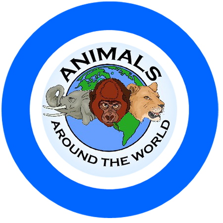 animals around the world blue